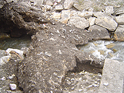 La source de l'Ariège polluée en Andorre